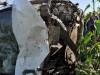 Acidente com vitima fatal na BR 428 próximo acidade de Cabrobó – PE